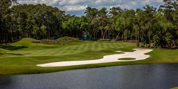 TPC Sawgrass Golf Course Hole 12 Photo 1 Wide