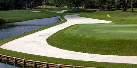 TPC Sawgrass Hole 11 Photo 1 Wide
