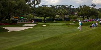 TPC Sawgrass Golf Course Hole 9 Photo 1 Wide