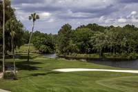 TPC Sawgrass Hole 14 Photo 1