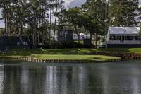 Tpc Sawgrass Hole 17 Photo 5