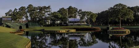TPC Sawgrass Hole 17 Panorama Photo 5