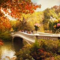 """Bow Bridge Crossing"" by Jessica Jenney"
