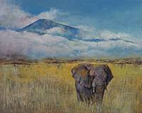 Elephant Savanna