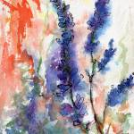 """California Wild Blue Lupines Watercolor"" by GinetteCallaway"