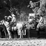 """Wagin Woolorama Rodeo"" by MimiAtherton"