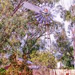 """""""Aussie Landscape"""" by MimiAtherton"""