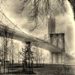 """""""Brooklyn Mood"""" by jeffwatts"""