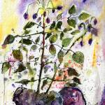 """Purple Potatoes and Blossoms Watercolor"" by GinetteCallaway"