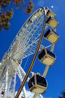 Perth Observation Wheel