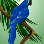 """Hyacinth Macaw"" by waterart"