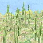 """Many Saguaros Reimagined"" by digitallightcreations"