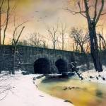 """""""Dead of Winter"""" by JessicaJenney"""