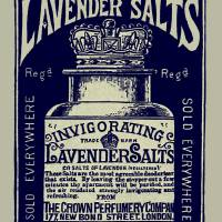 Lavender Salts Ad 1893 Art Prints & Posters by Phil Cardamone