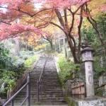 """Autumn Temple"" by AllisonAuer"