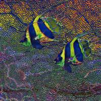 TROPICAL FISH II - AQUATIC EQUATIONS Art Prints & Posters by David McKinney