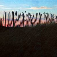 Cape Cod : Snow Fence Panorama Art Prints & Posters by Christopher Seufert