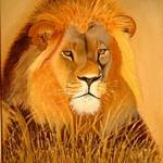 """african male lion"" by nicoart"