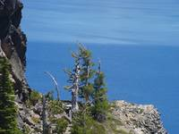 Crater Lake Natural Wonder Blue Lakes Pines Art