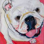 """The Bulldog"" by artbypatti"