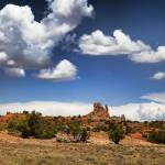 """IMG_3915"" by CanyonlandsPhotography"