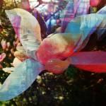 """Spring Blossom II"" by pattifriday"