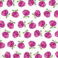 Pink Roses in Rows