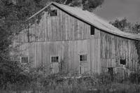 Old Barn in Black and White