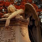 """""""Weeping Angel"""" by KerriAnnCrau"""