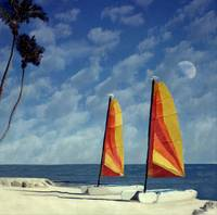 Sail Boats Cheeca Lodge, Florida Kets