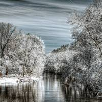 Winter Reflections Art Prints & Posters by Louise Reeves