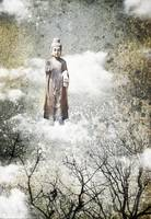 Buddha in the clouds