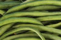 A Pile of Fresh Green Beans Close-Up_5116