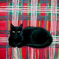 Tilly on Tartan