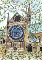 notre dame rosewindow