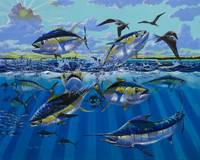 Yellowfin Run