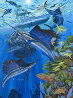 Sailfish Reef