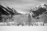 Colorado Rocky Mountain Winter Horseshoe Park BW