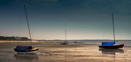 Sailboats At Low Tide