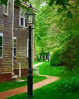 The Yard Lamp