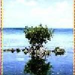 """""""1"""" by MyiKandi"""