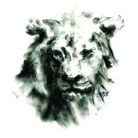 Lion Art Prints & Posters by Michael Edens