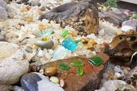 Seaglass Coastal Beach Shells Agates Garden Art