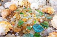 Seaglass Coastal Beach Shells Sea Glass Agates