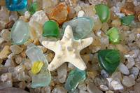 Starfish Fine Art Photography Seaglass Agates
