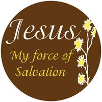 force of salvation