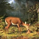 """""""Maternal deer"""" by bandtdigitaldesigns"""