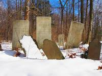 Gravestones in a Rural NY Cemetery in Winter (Dram