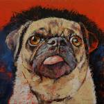 """Pug Portrait"" by creese"