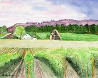 Oregon_Wine_Country_ III